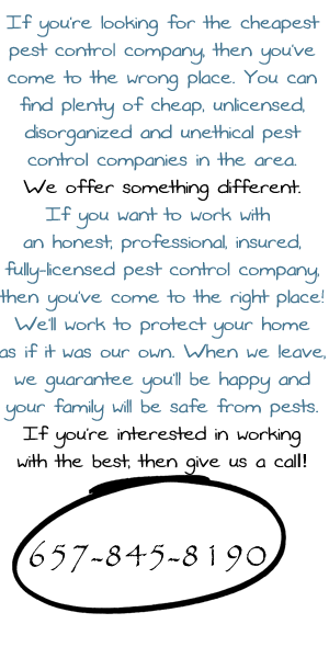 Call Termite Control Huntington Beach